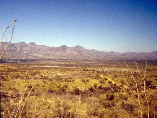 Landscape 0009