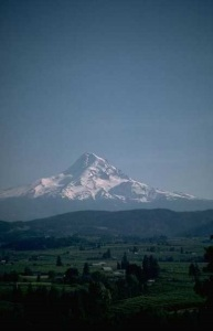 MOUNTAIN SCENE 025