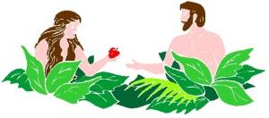 ADAM & EVE 15