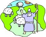 SHEPHERD & SHEEP