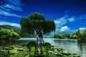 background-beautiful-cloud-207188 (1)