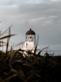 grass-lighthouse-perspective-18907095499443377558362750.jpg