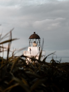 grass-lighthouse-perspective-18907095499443377558362750.jpg