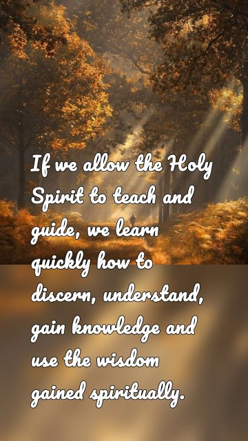 If we allow the Holy Spirit to teach and guide, we learn quickly how to discern, understand, gain knowledge and use the wisdom gained spiritually.