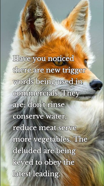 Have you noticed there are new trigger words being used in commercials. They are; don't rinse conserve water, reduce meat serve more vegetables. The deluded are being keyed to obey the latest leading.