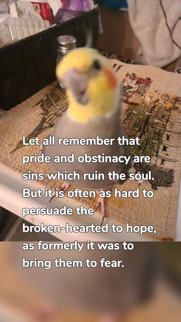 Let all remember that pride and obstinacy are sins which ruin the soul. But it is often as hard to persuade the broken-hearted to hope, as formerly it was to bring them to fear.