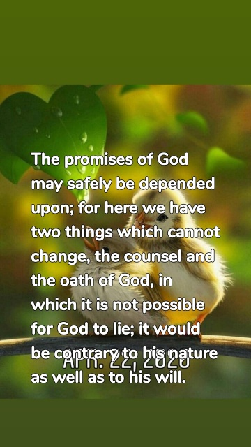 The promises of God may safely be depended upon; for here we have two things which cannot change, the counsel and the oath of God, in which it is not possible for God to lie; it would be contrary to his nature as well as to his will.